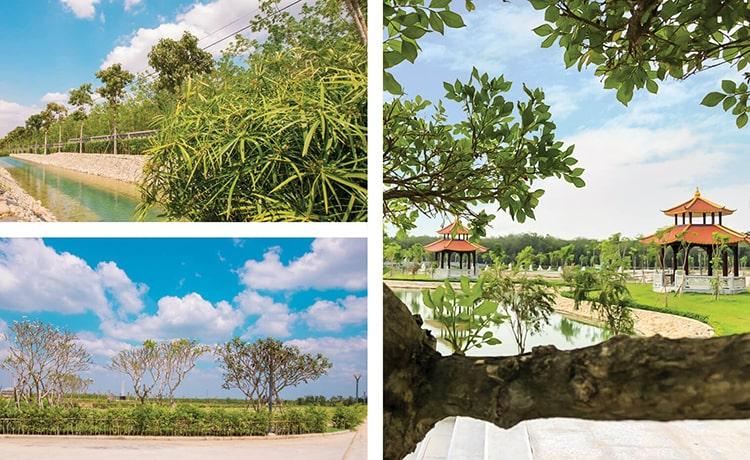 Nghĩa trang ở Việt Nam có gì khác biệt so với các nước trên thế giới?