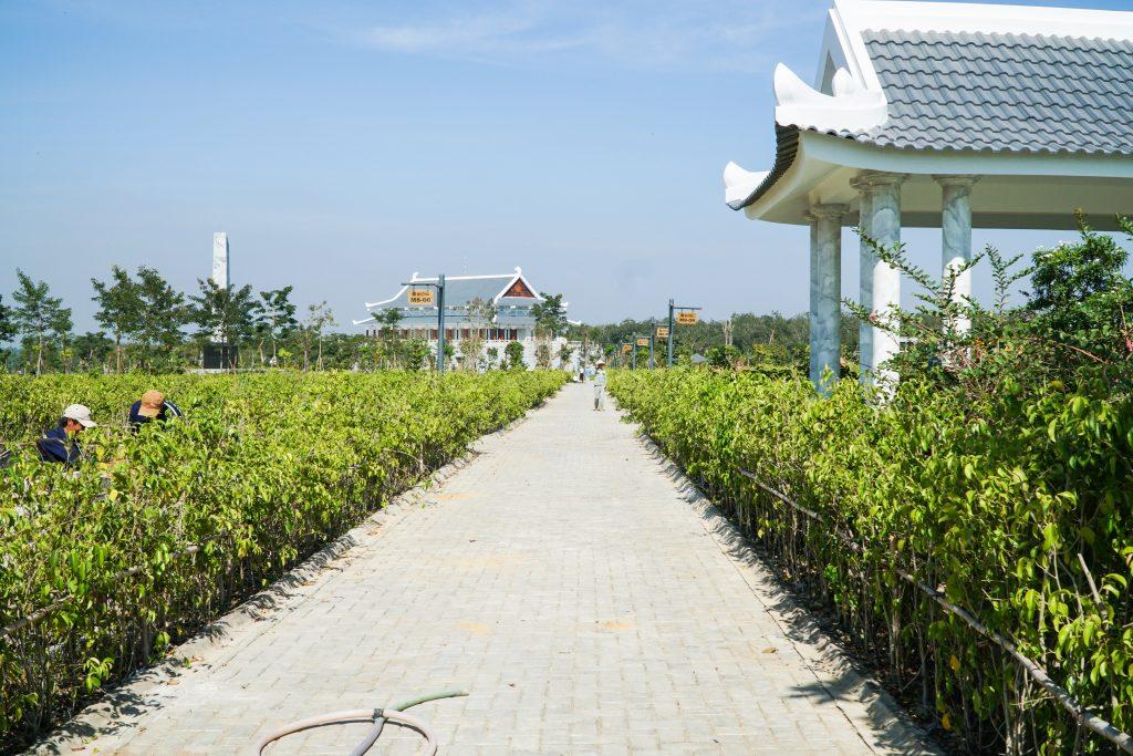 Xung quanh khu mộ gia tộc được trồng nhiều mảng xanh