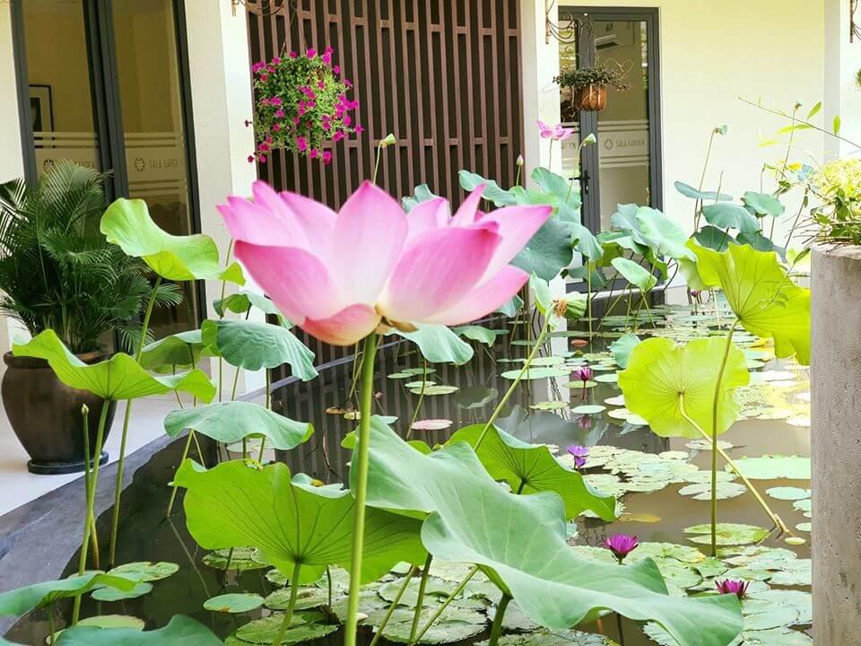 nhà điều hành nghĩa trang sala garden